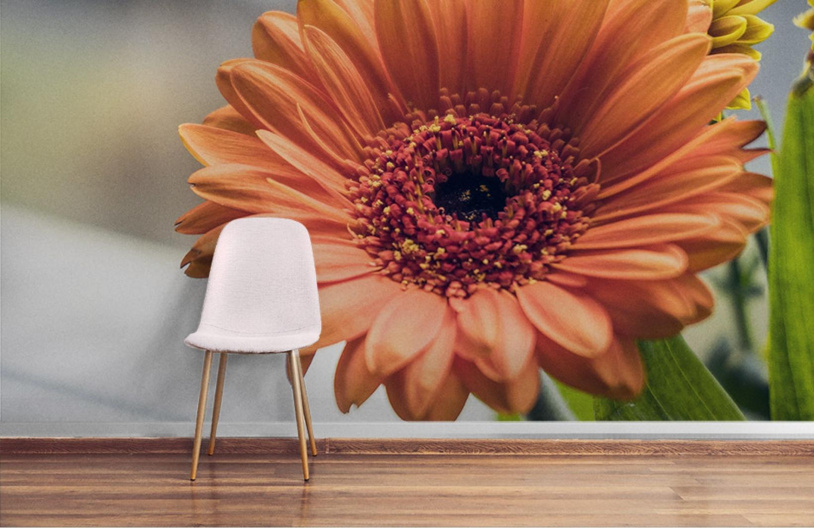 Яркие фотообои с цветком герберы Узоры на Стене