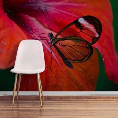 Страстные фотообои 3 д с бабочкой и красным цветком  Узоры на Стене